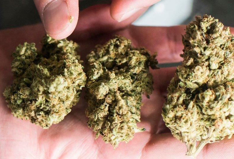 buy weed california legalization dispensaries