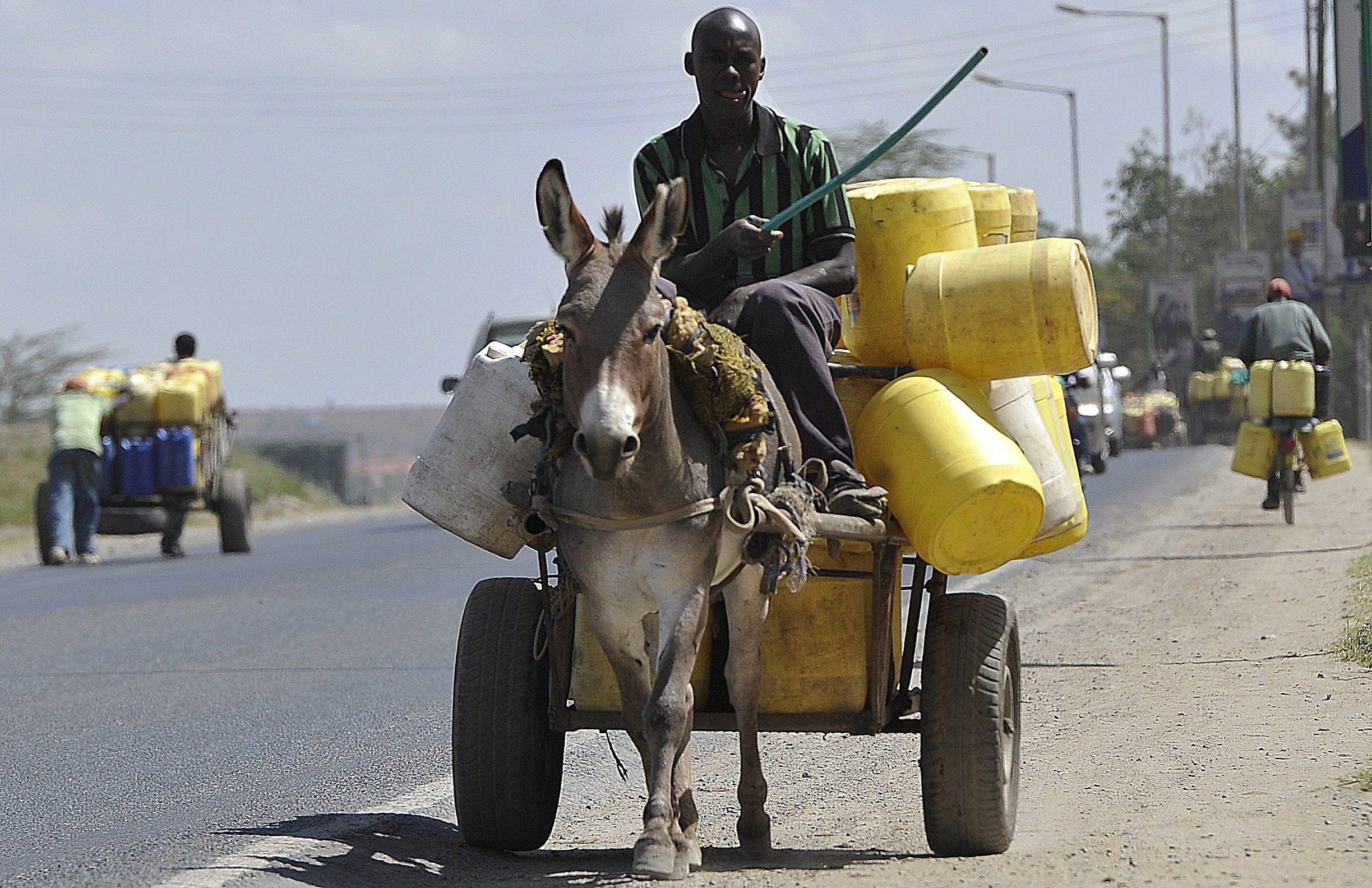 Donkey_Transports_Water