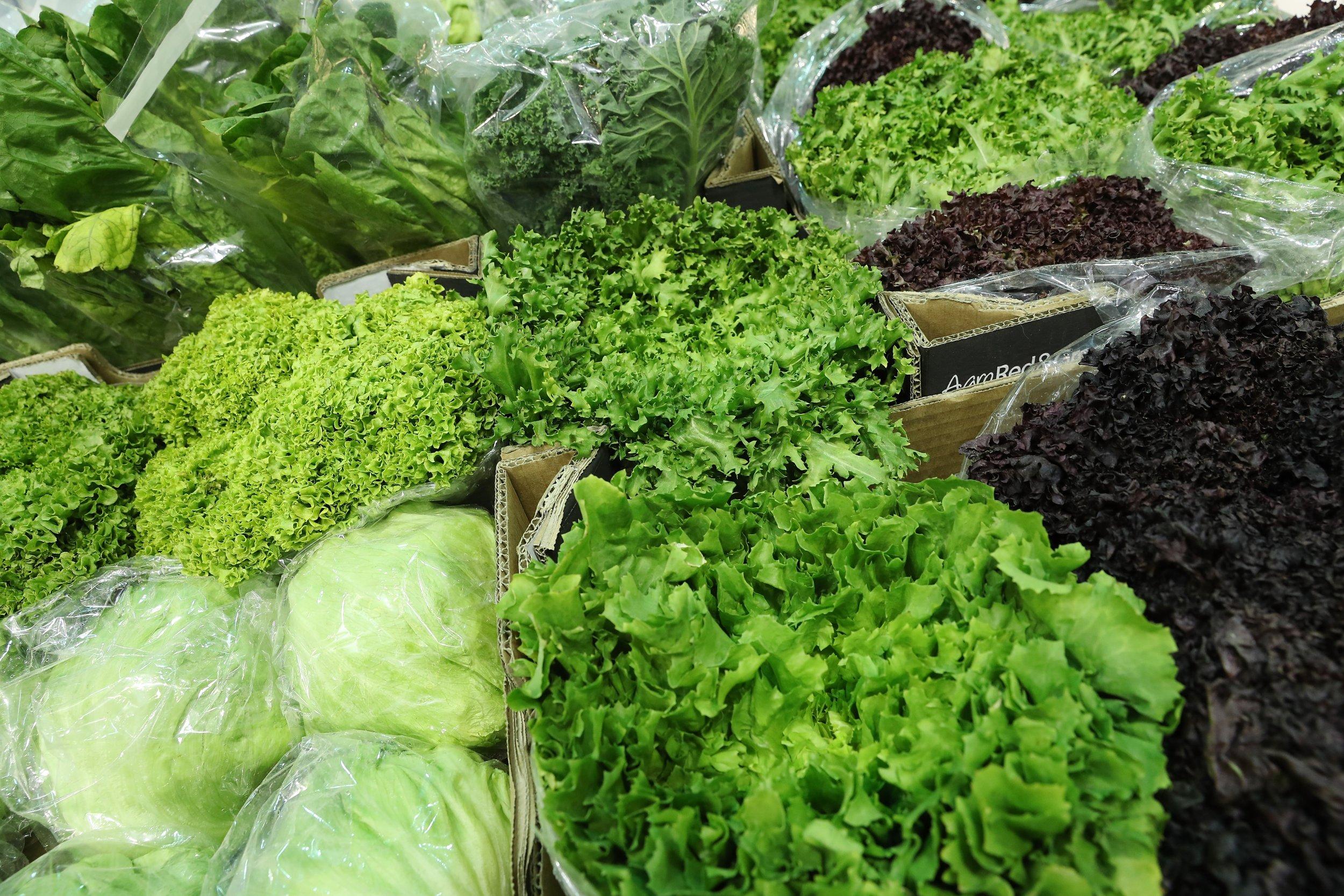 Deadly E Coli Hiding In Romaine Lettuce Means Eating