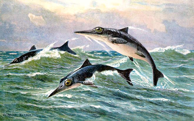 Ichthyosaur painting