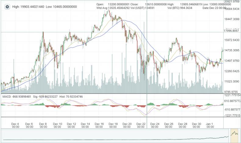 Tulip craze bitcoin