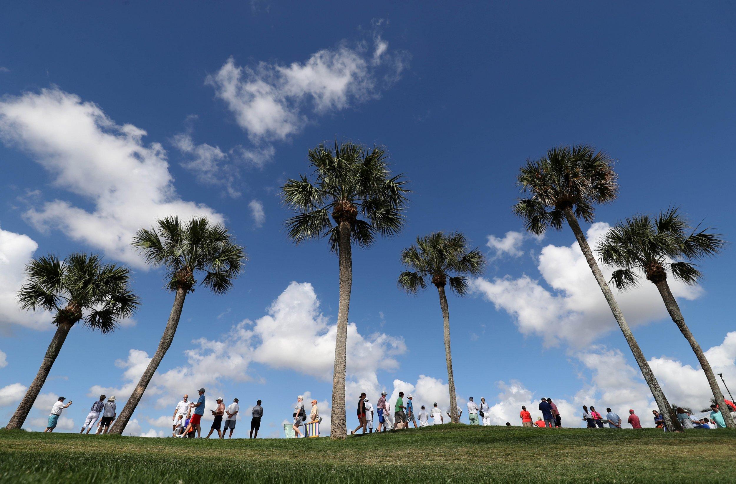 1_9_Palm_Golf