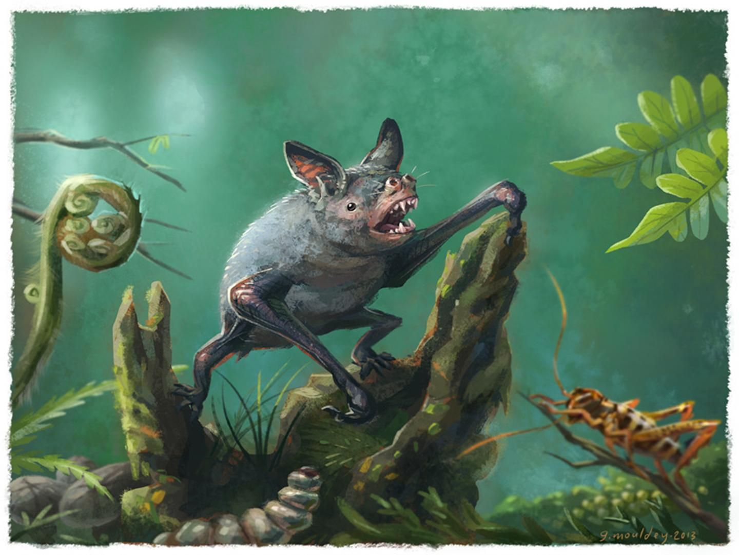 Giant extinct bat that crawled on four legs 16 million years ago was discovered in New Zealand
