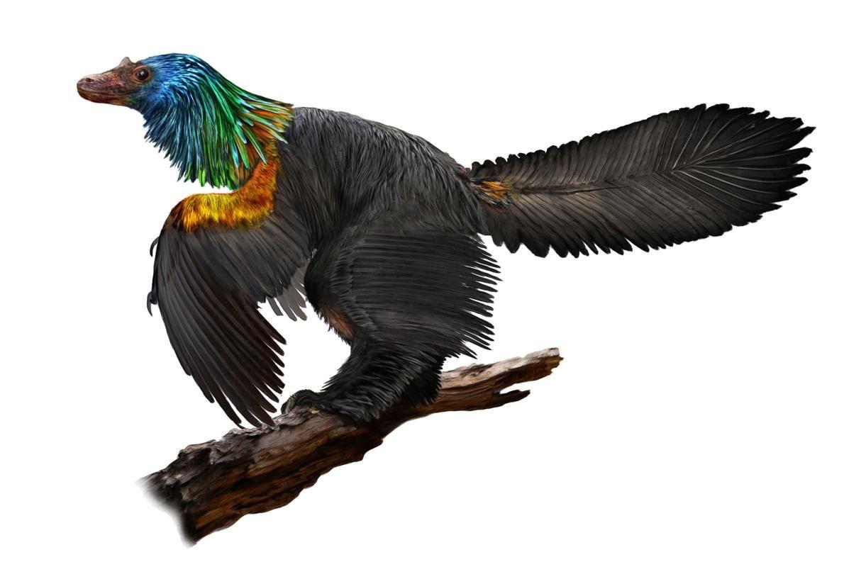Iridescent_Dinosaur