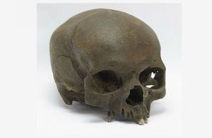 s300_skull1