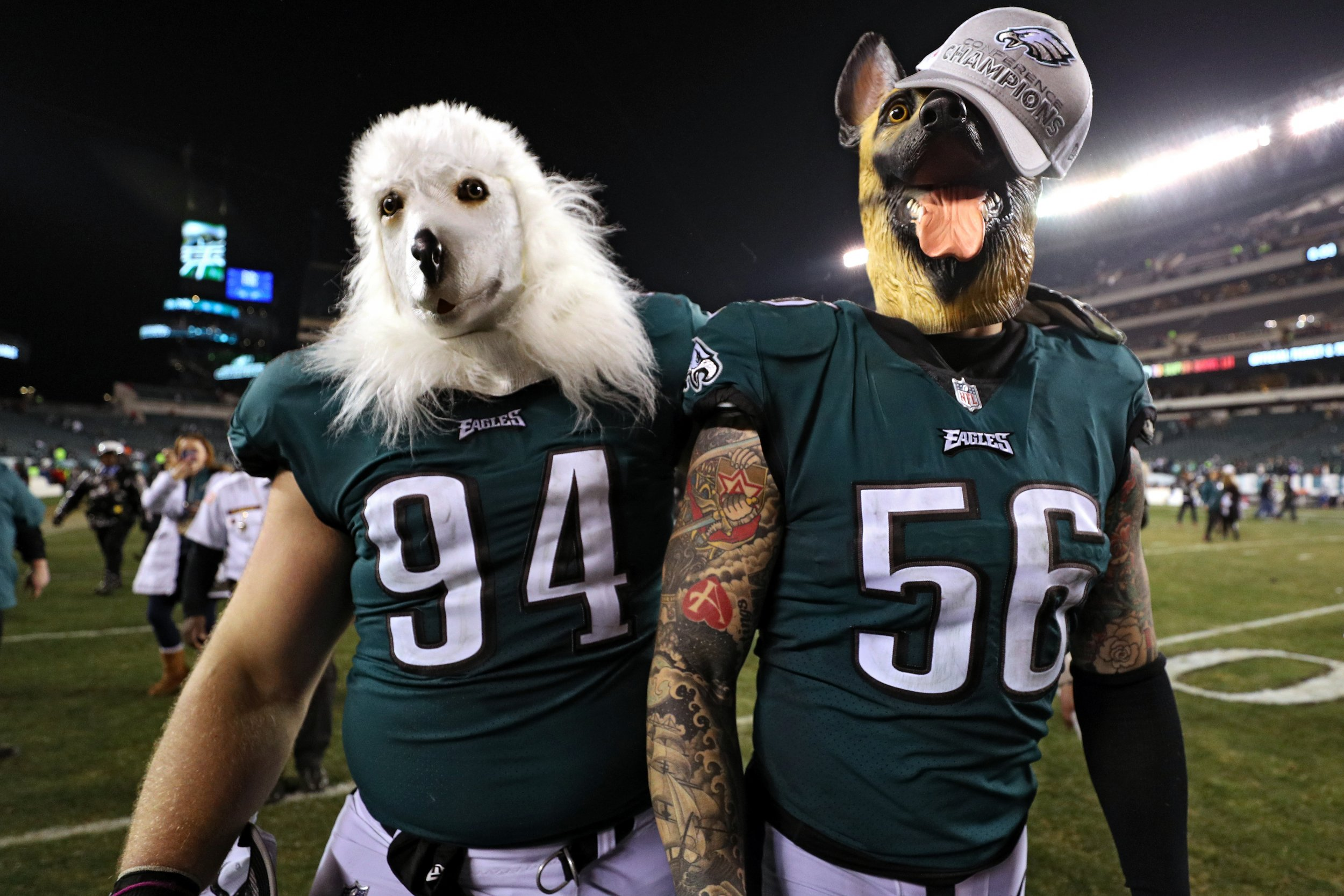 eagles dog masks