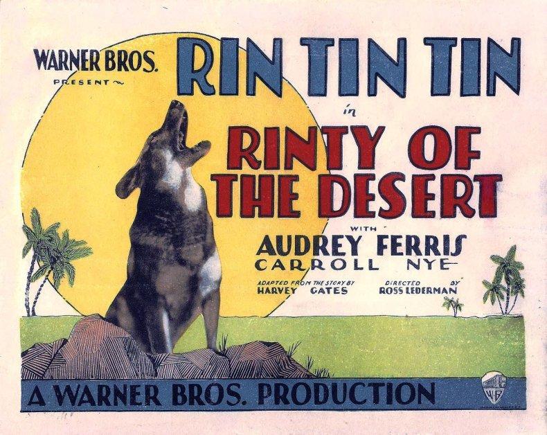 Rinty_of_the_Desert_lobby_card