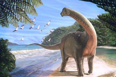 Monsourasaurus