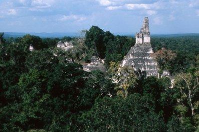 Tikalpano