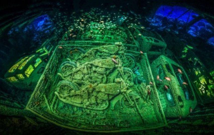 underwater-photographer-of-the-year-2018