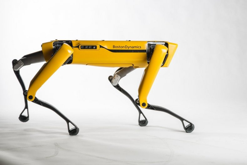 robot dog spotmini boston dynamics