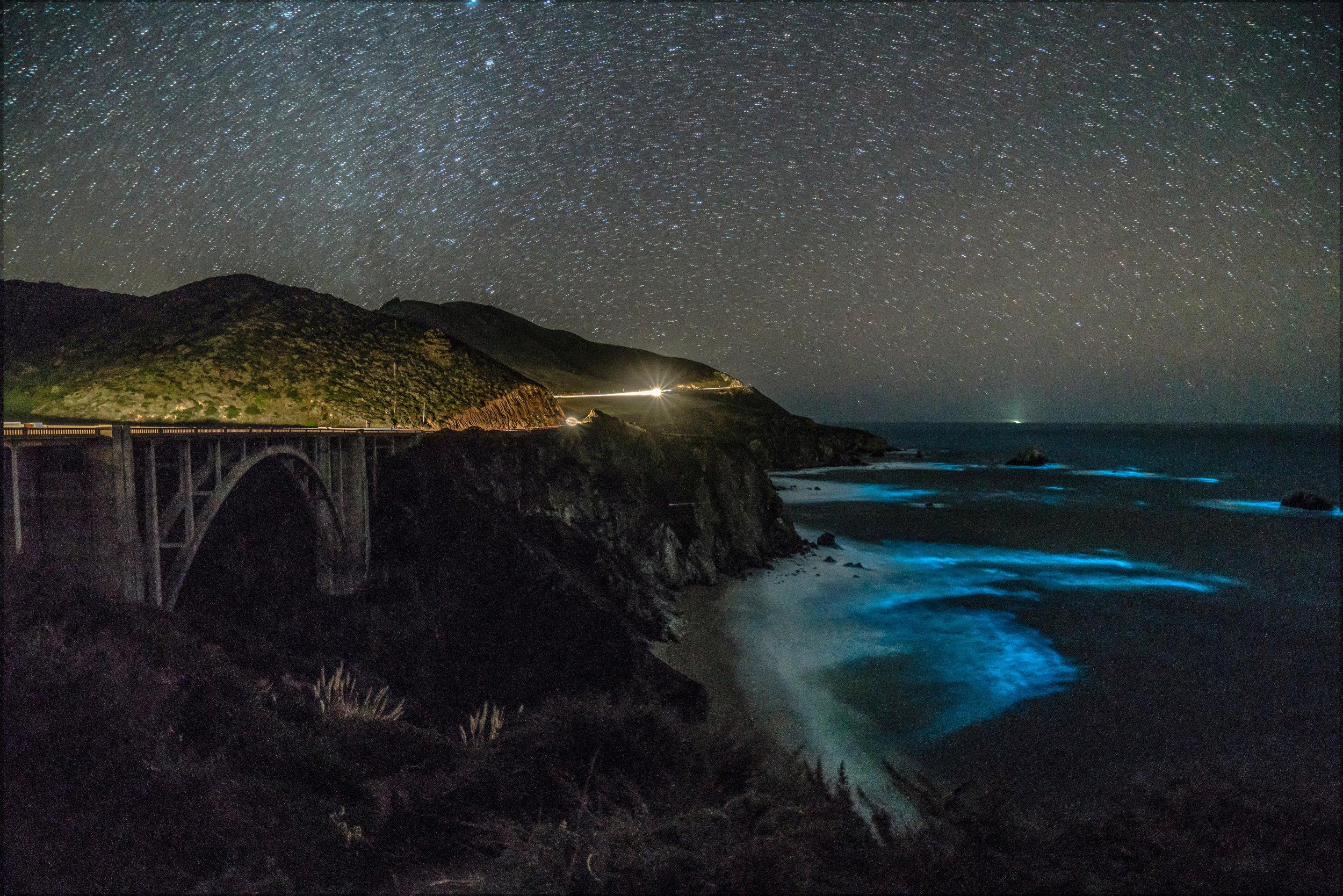 02_20_bioluminescent