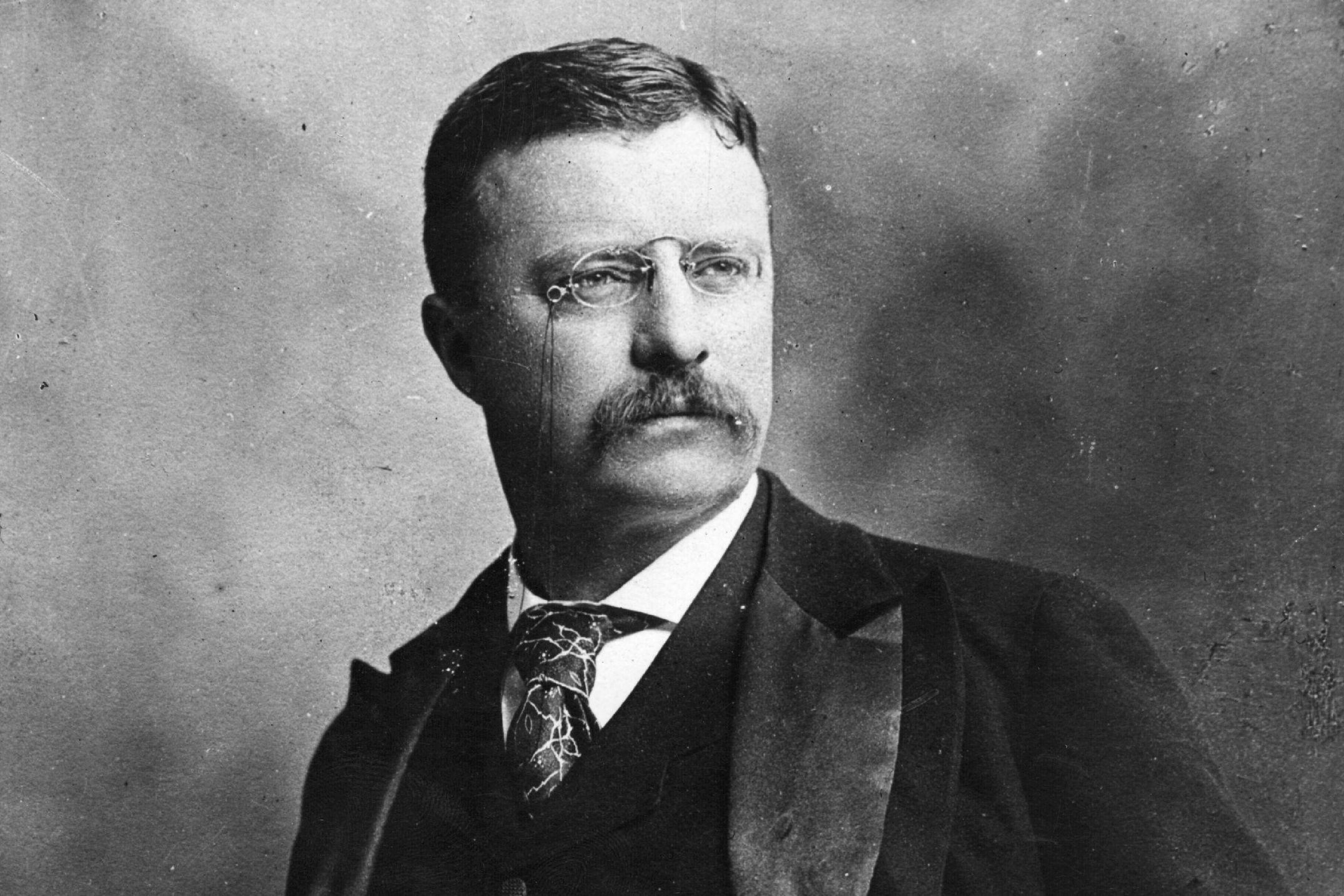 04 Theodore Roosevelt