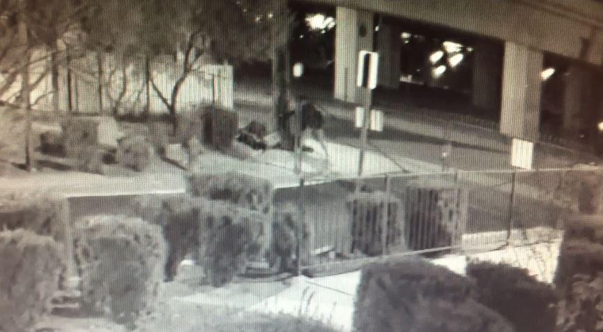 Las Vegas Homeless Shooting