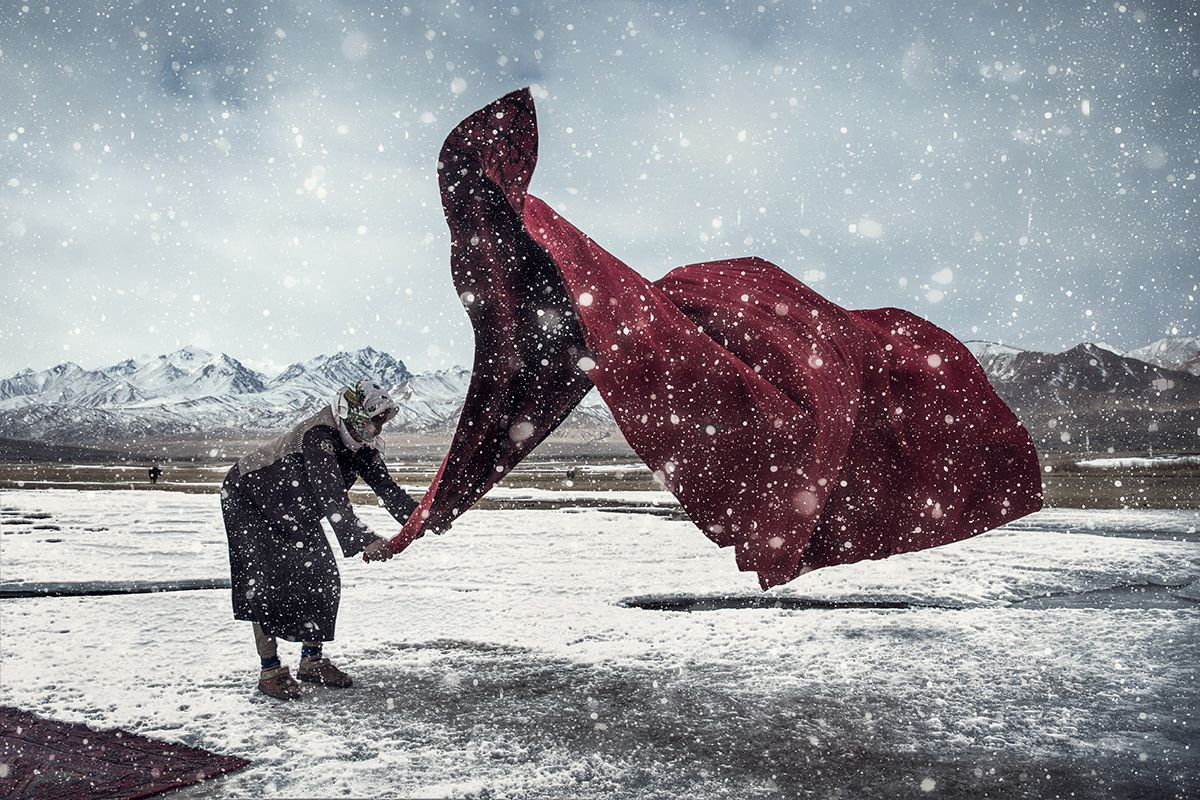 Beautiful Images From The Sony World Photography Awards -5505