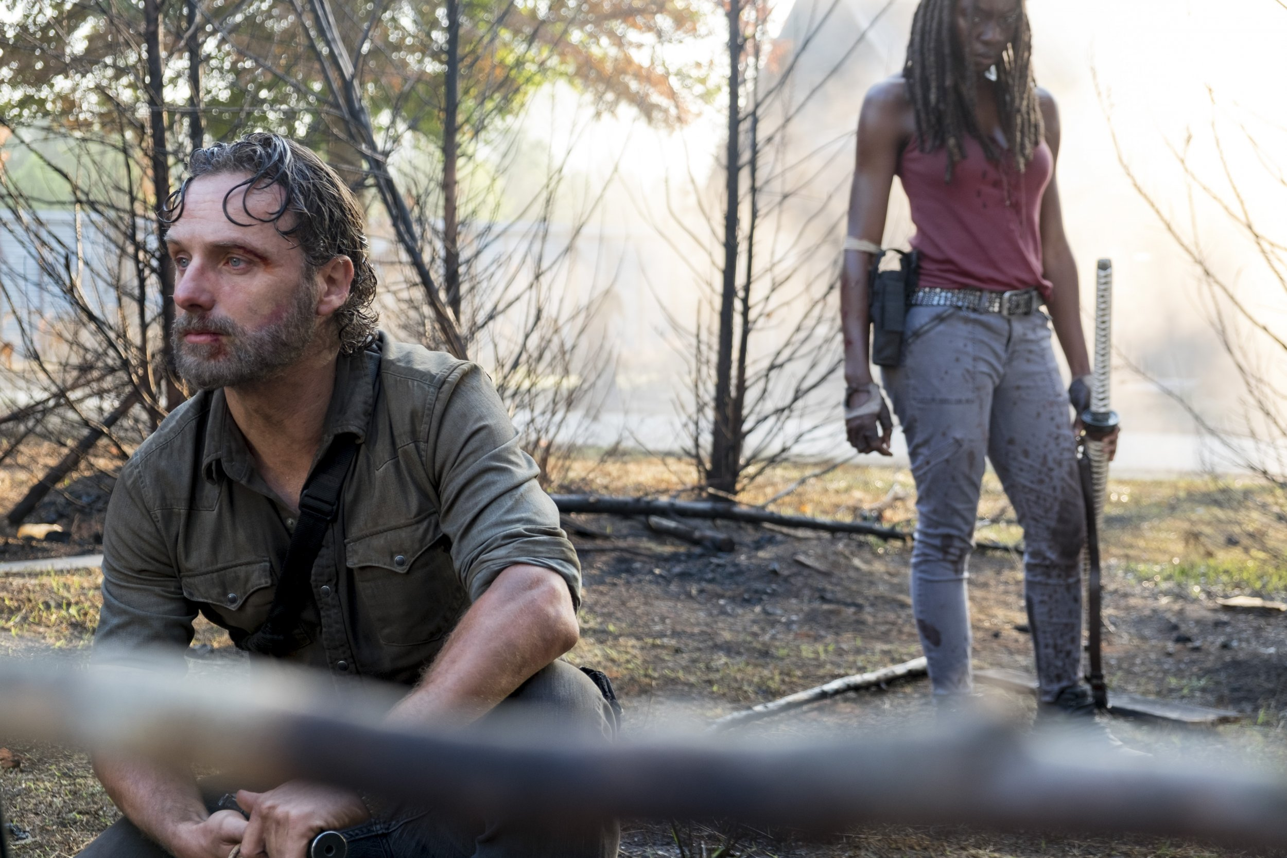 The Walking Dead Rick and Michonne