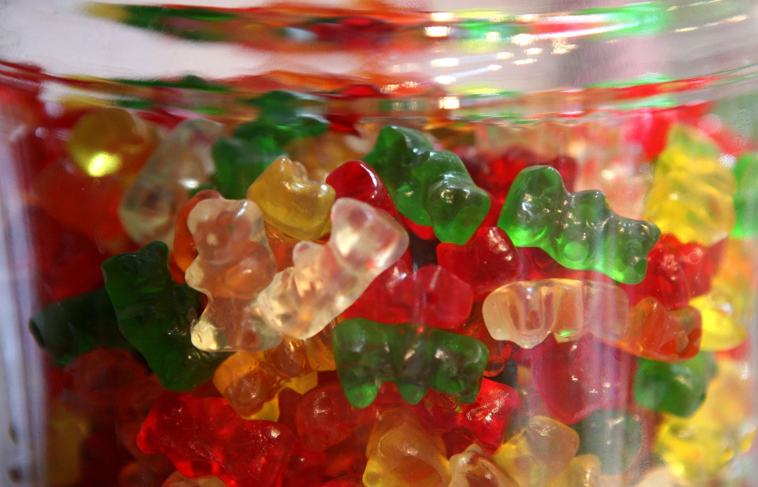 bears bears bears bears bears bears bears bears