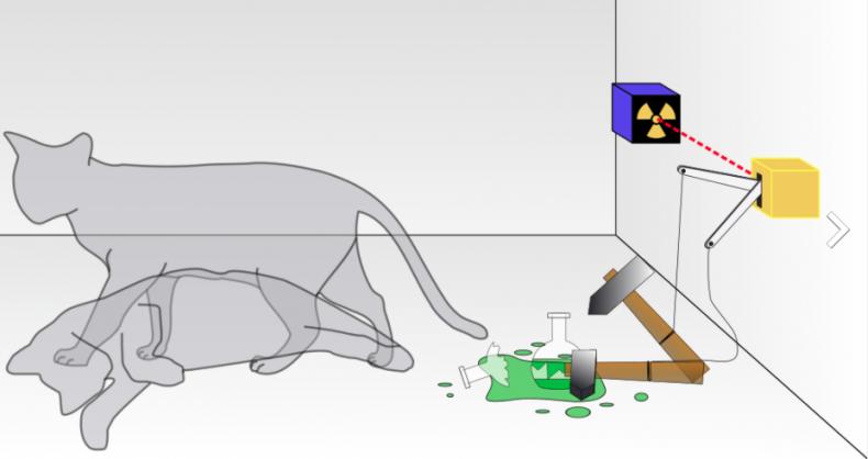 3_6_Schrödinger's Cat