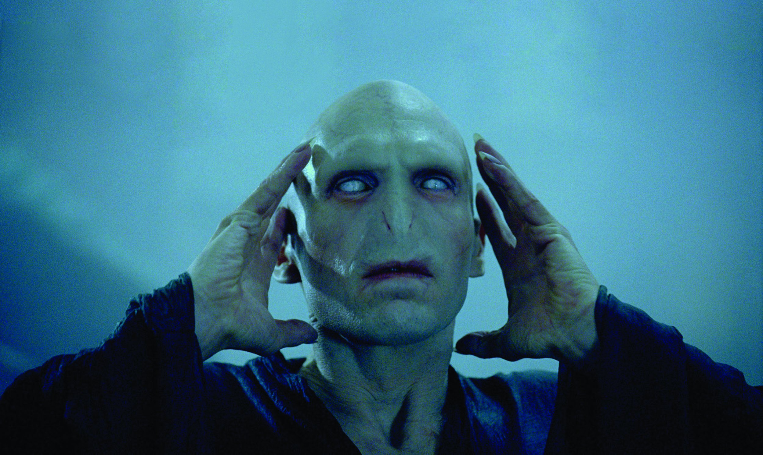 Image result for goblet of fire voldemort