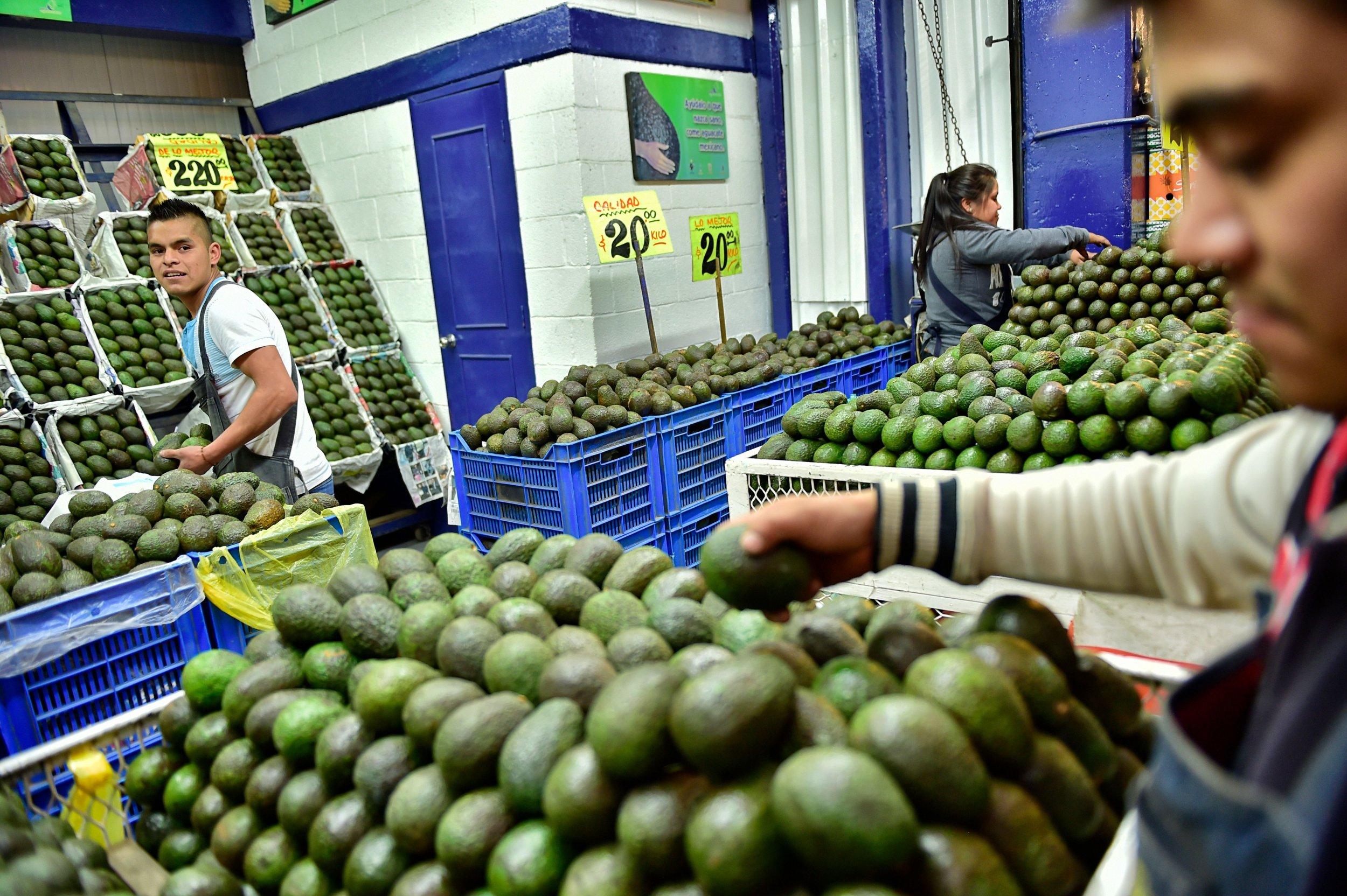avocado mexico city