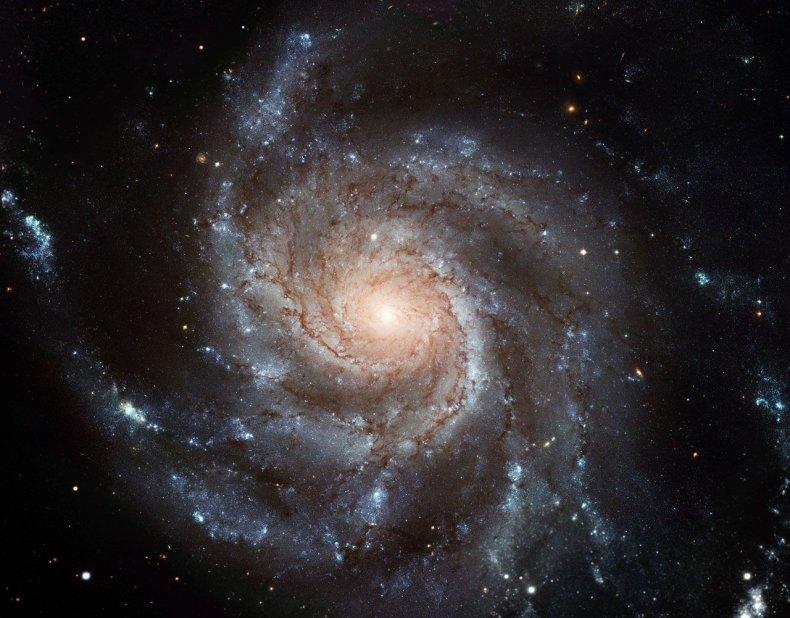 3_14_Pinwheel Galaxy
