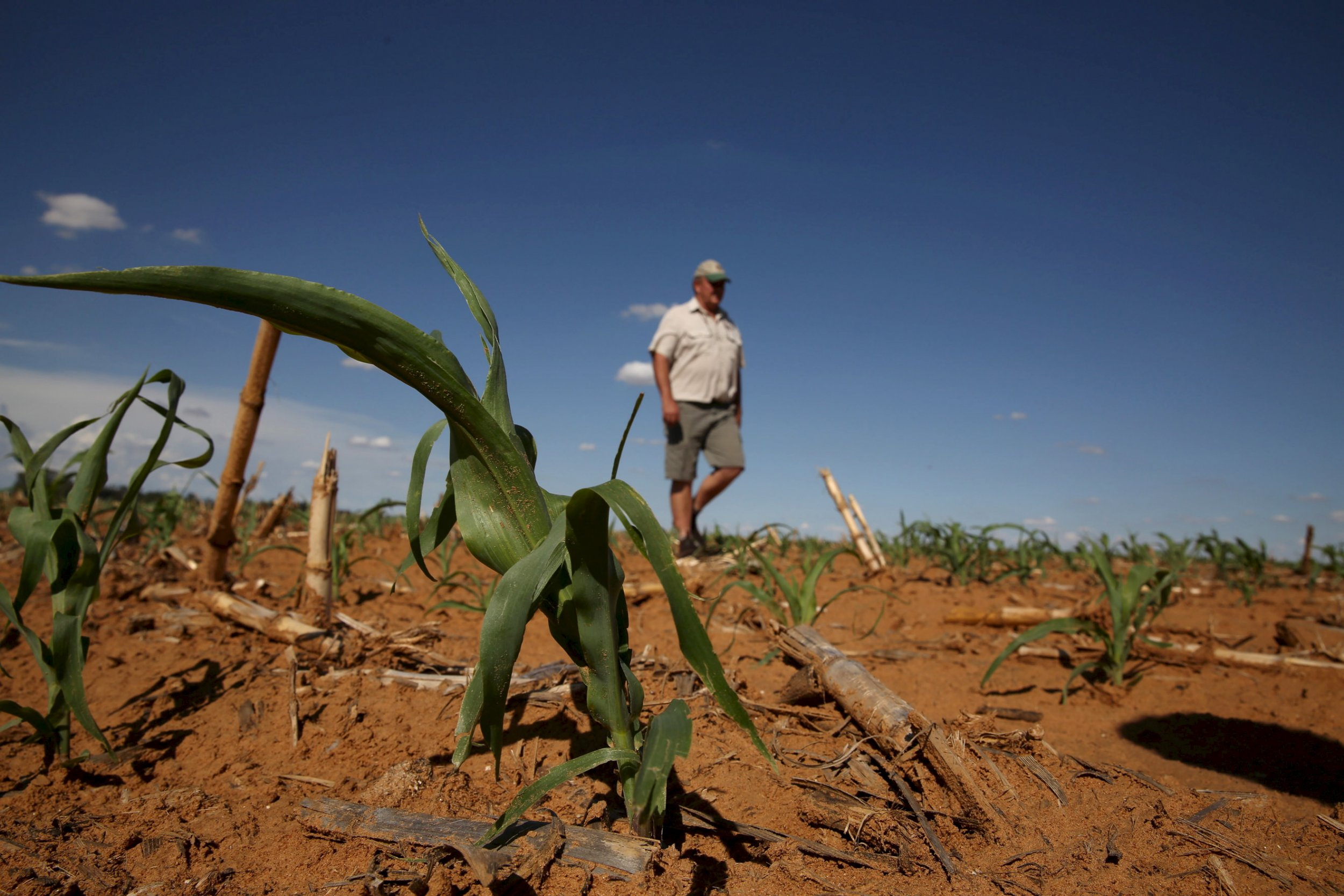 National Business Group On Health >> Are White Farmers Being Forced Off Their Land in South Africa?