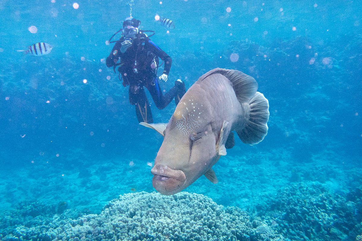05 Hurghada