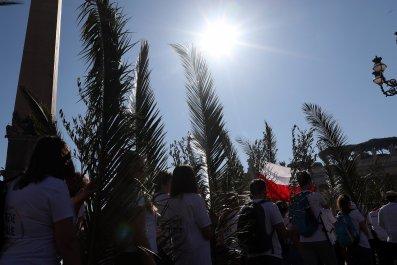 palm sunday at vatican