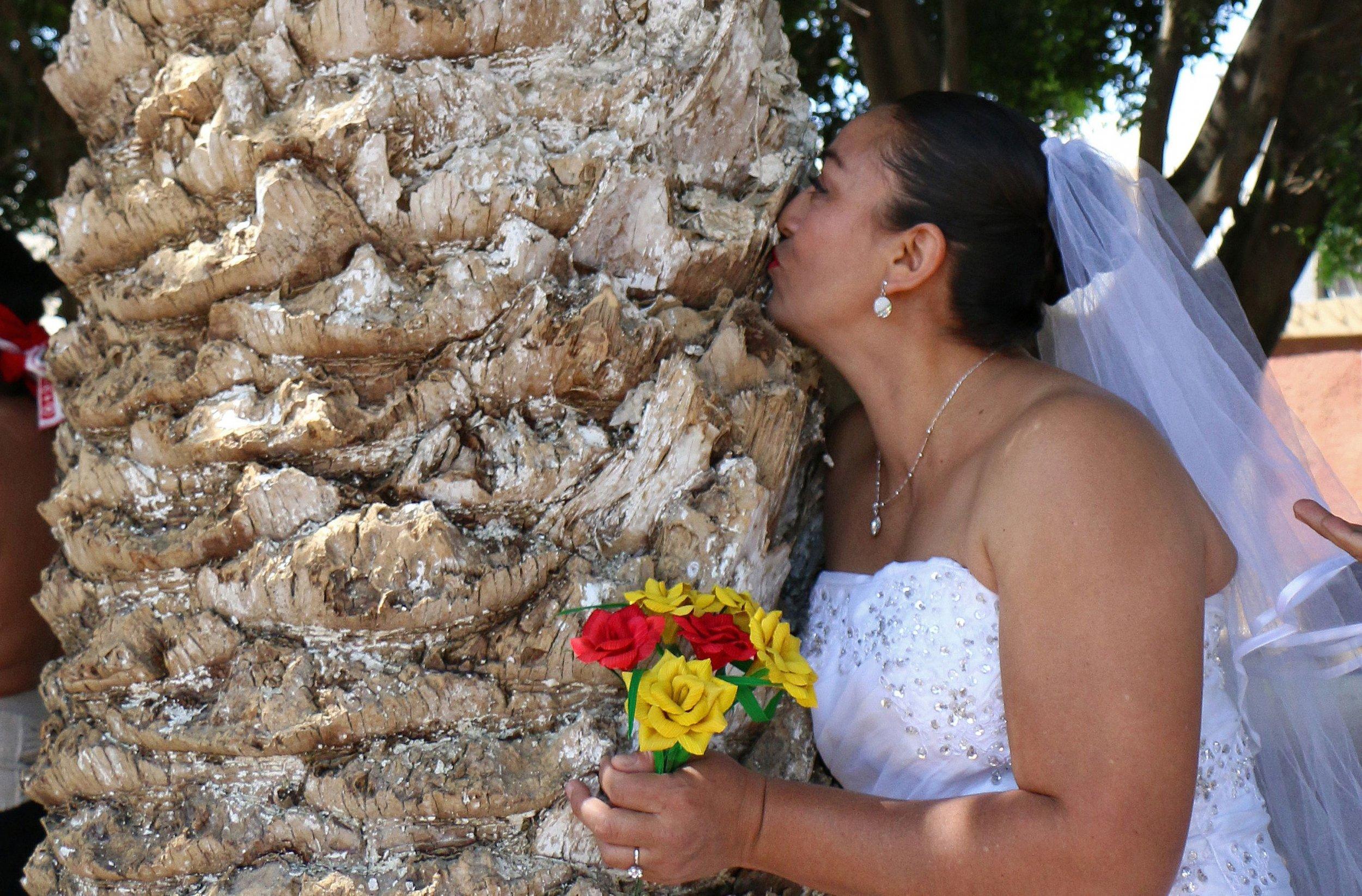 woman marries tree
