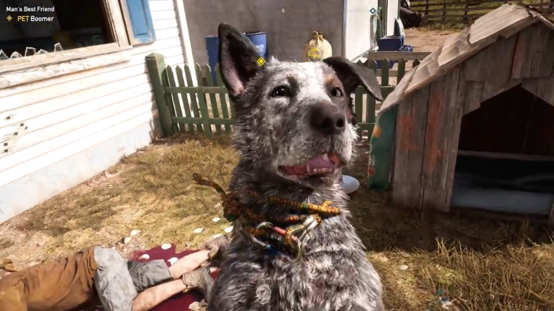 'Far Cry 5' Animals: How to Get Boomer Location Cheeseburger Peaches Fangs For Hire