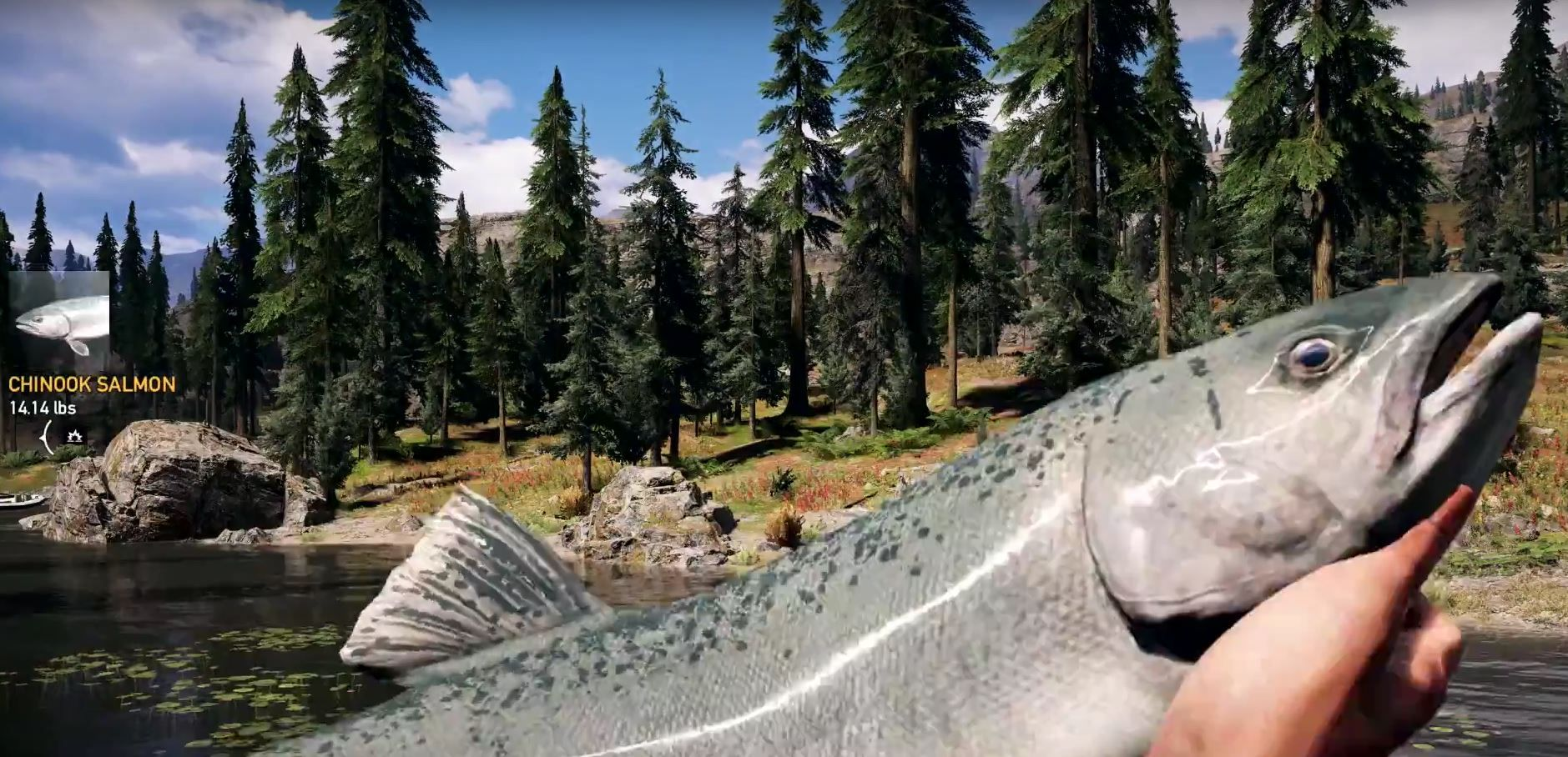 far cry 5 fishing fish locations of to catch find where best fishing rod