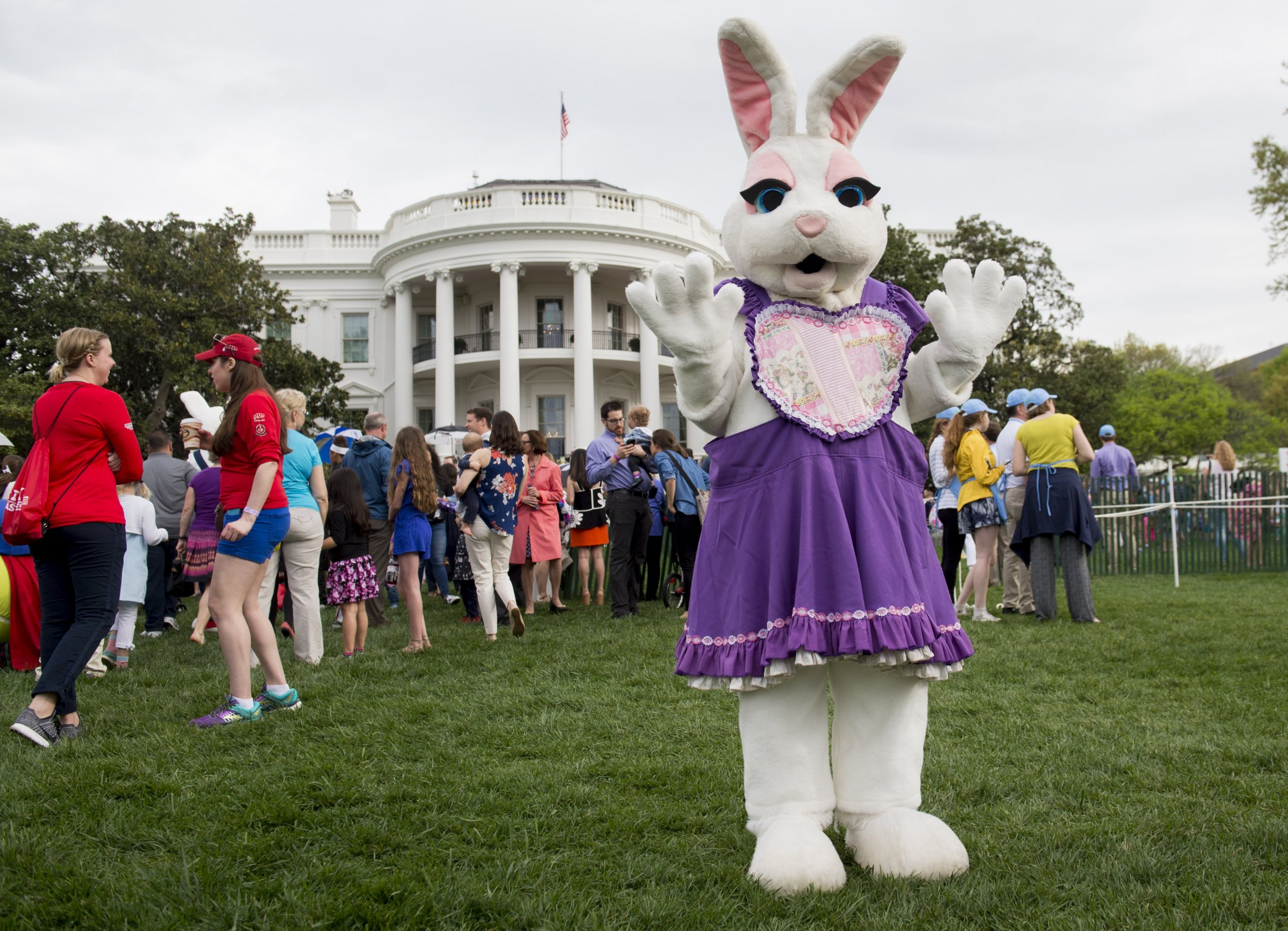 wh easter bunny egg roll