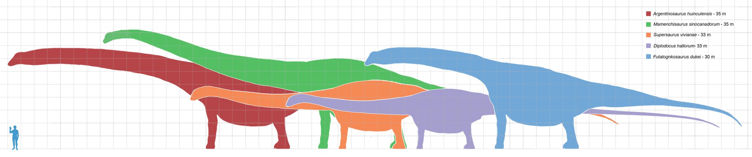4_3_Sauropods