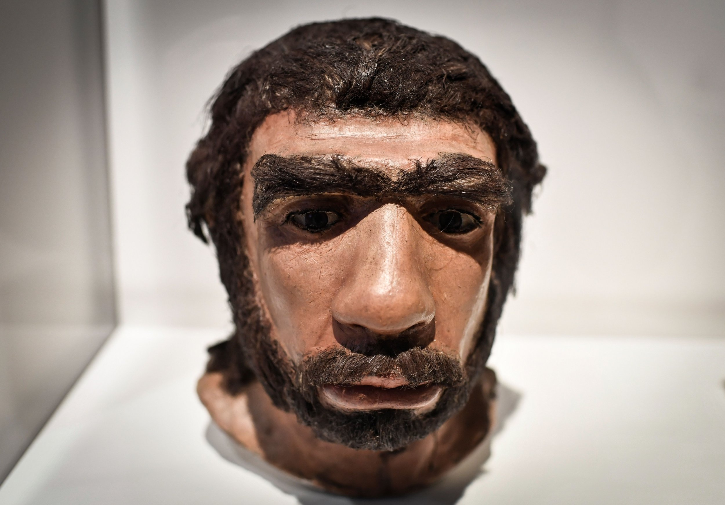 04_04_neanderthal_nose_breathing