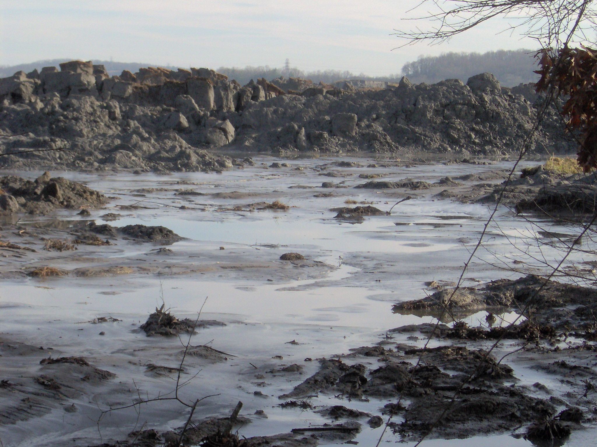 Kingston-plant-spill-swanpond-tn2