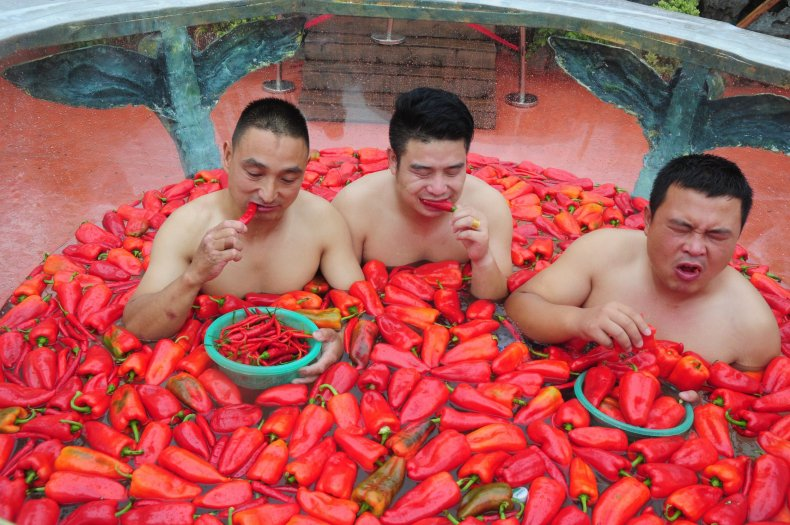 4_9_chili pepper