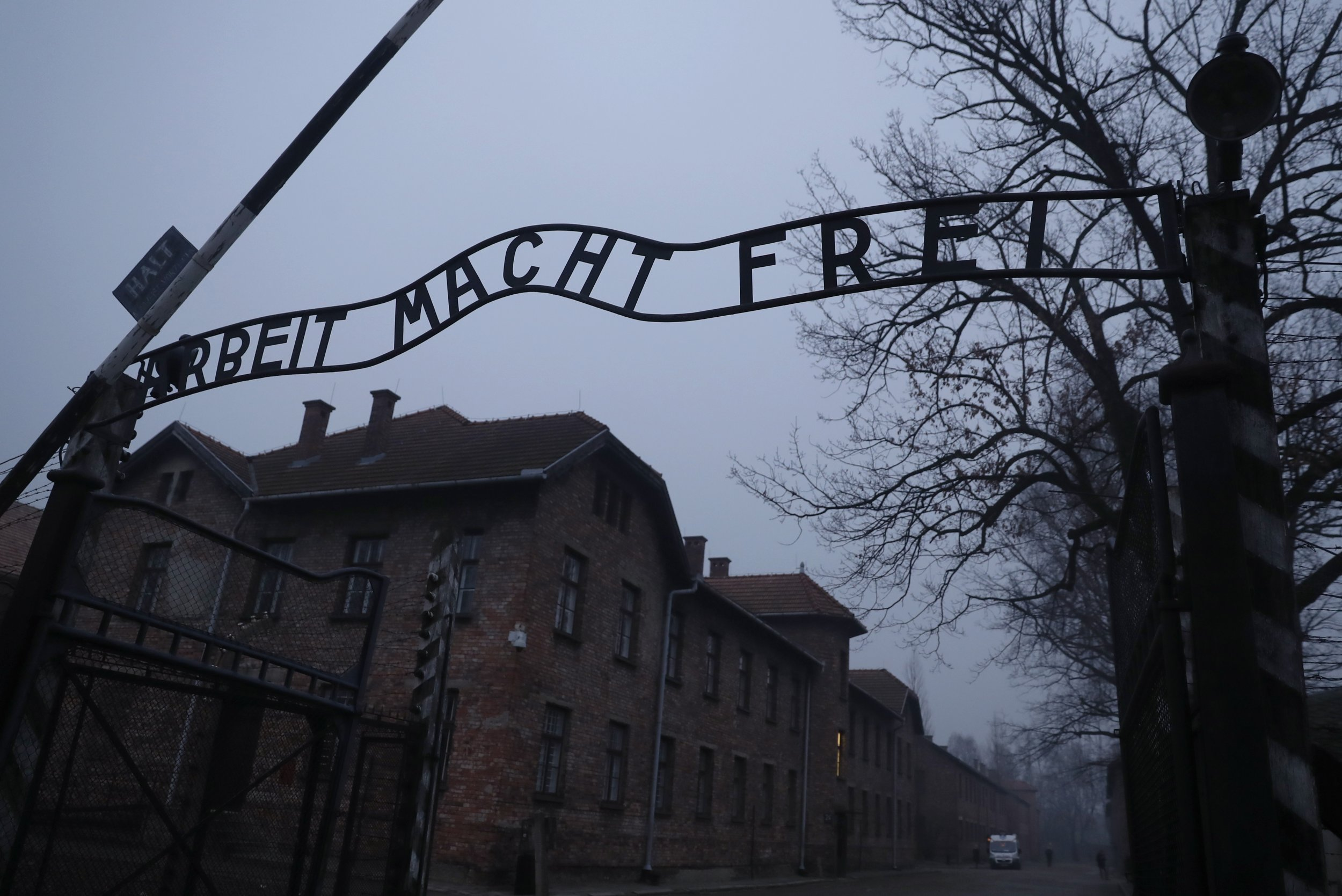 a flashback in remembrance of the holocaust and its victims Holocaust survivors  md article 4-3-2013 the latest revelation about the a flashback in remembrance of the holocaust and its victims holocaust stuns a.