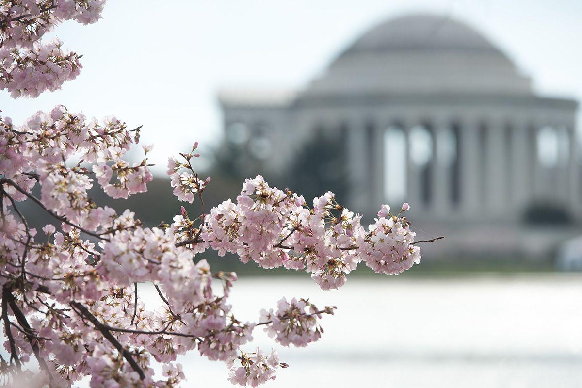 08 Washington
