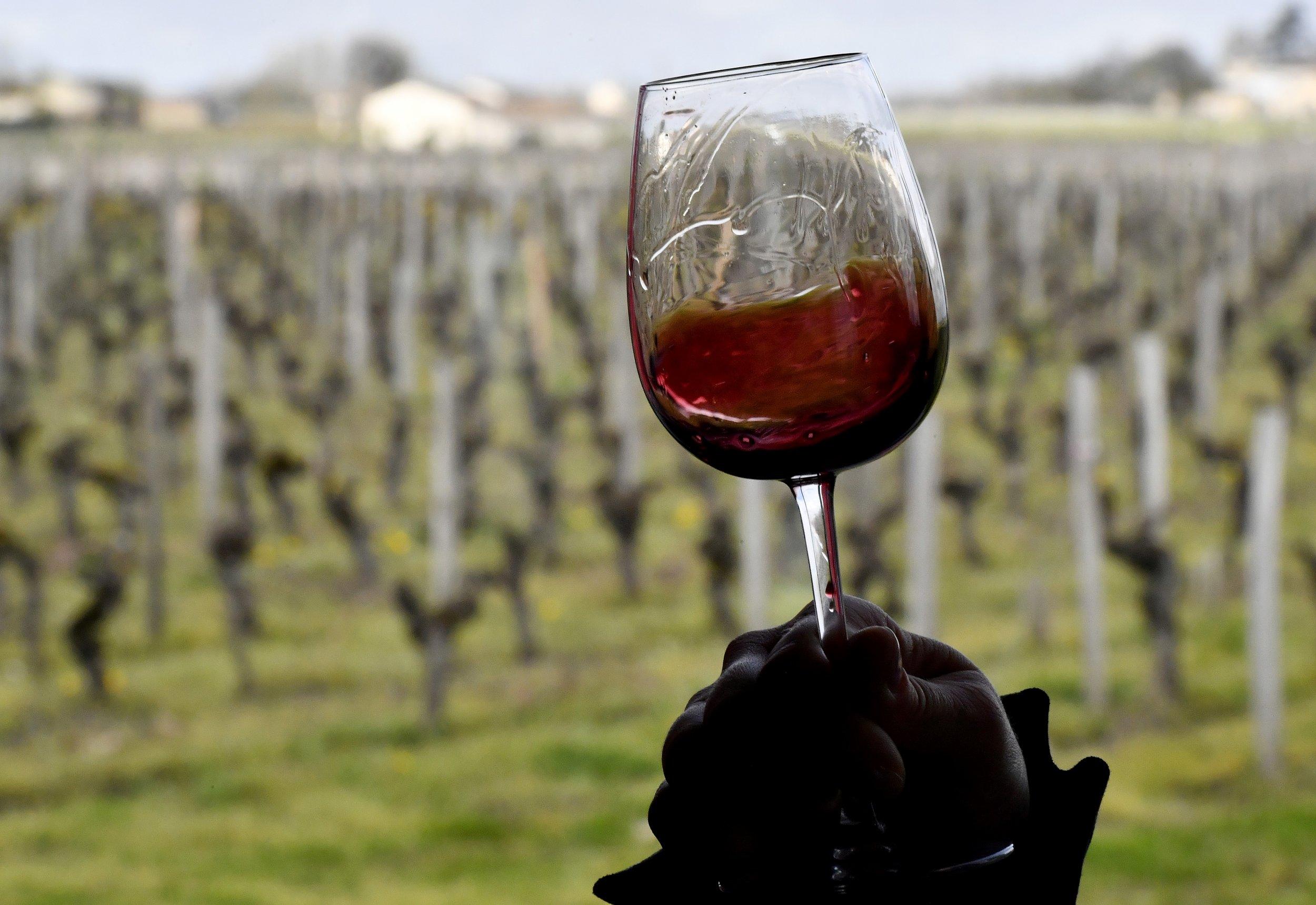 4_13_Wine