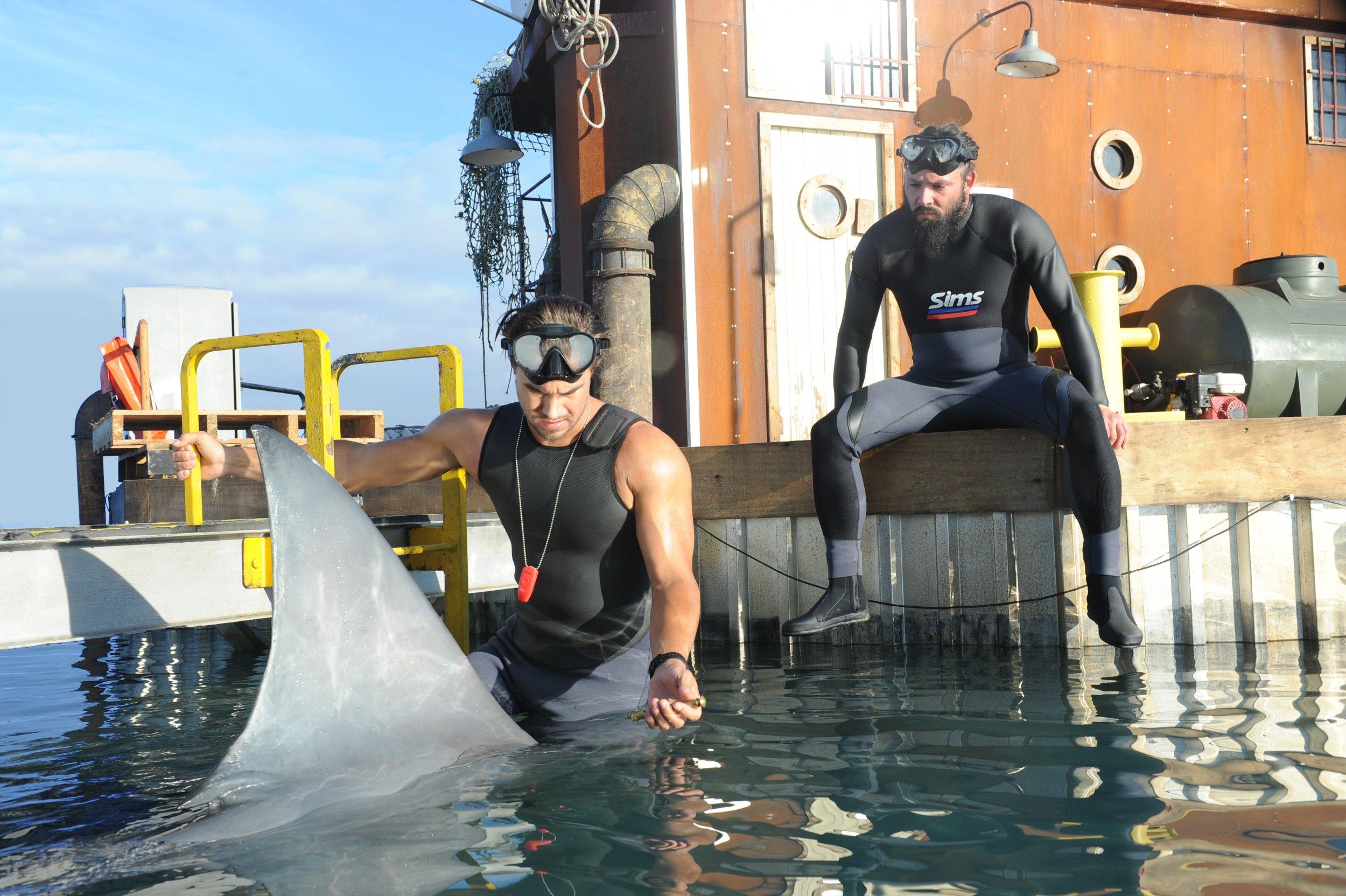 deep-blue-sea-2-shark-wetsuits