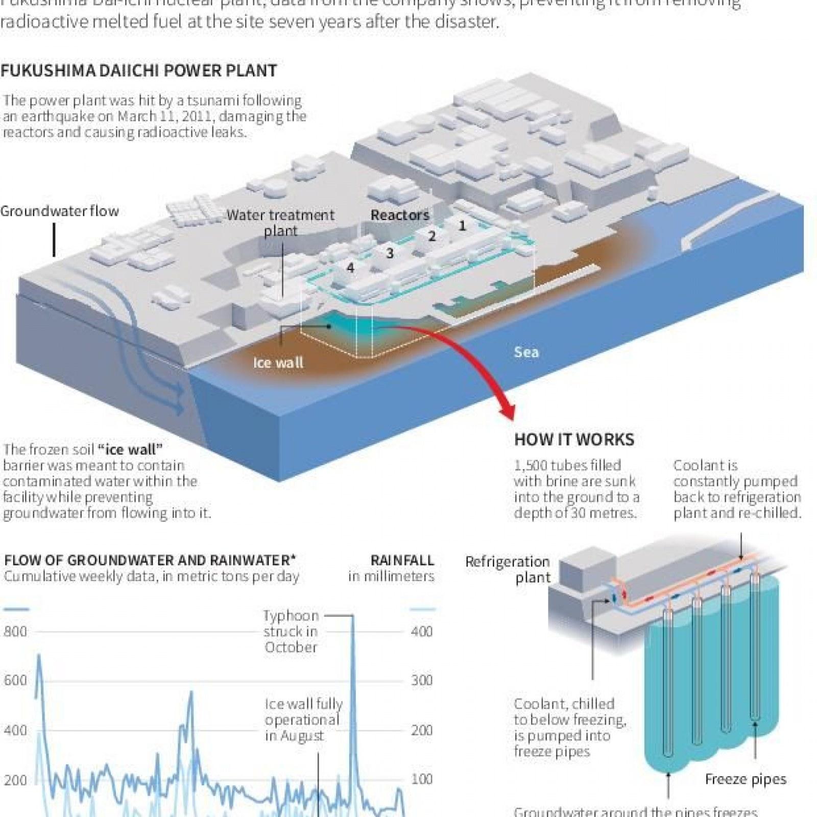 Fukushima Nuclear Plant: Tsunami Wall Could Have Avoided