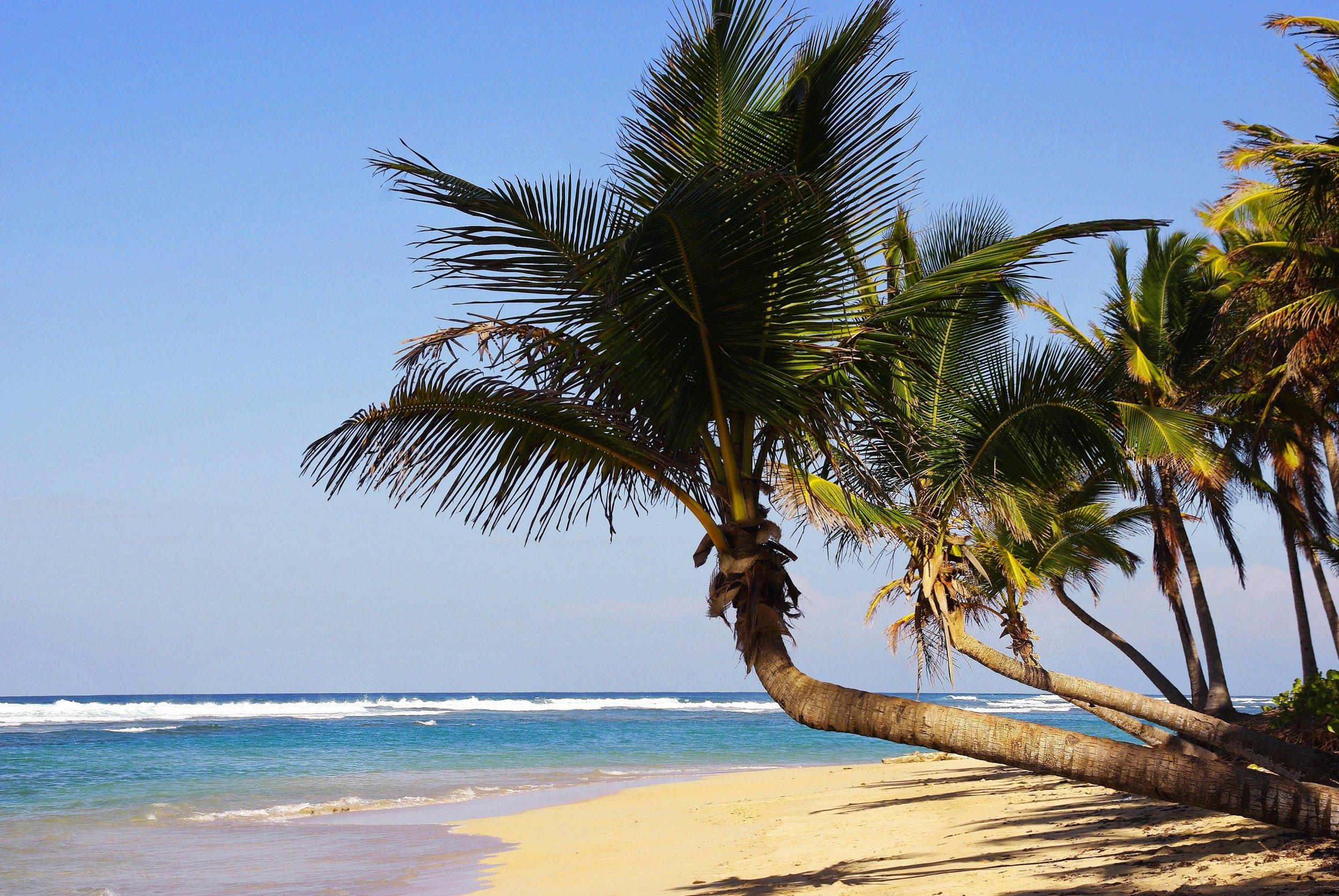 07 Punta Cana