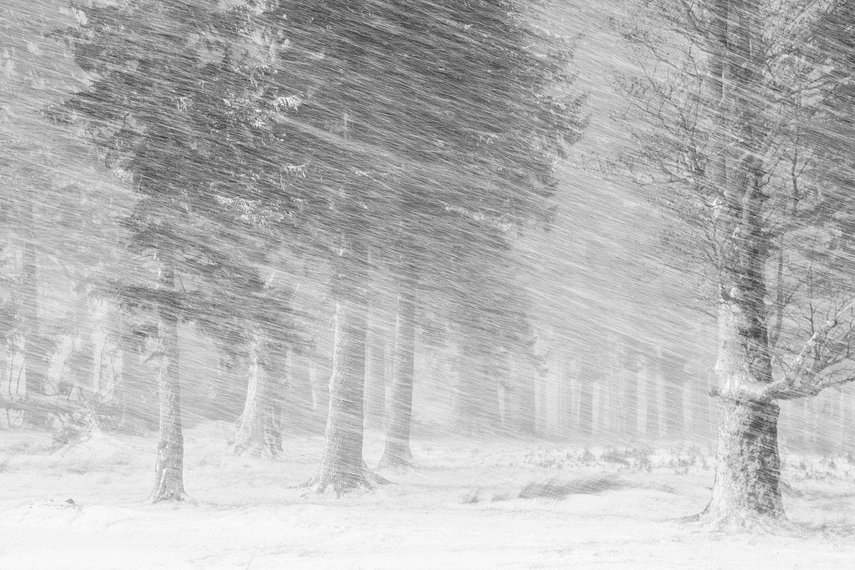 05 Snow-Cosmin Stan 3392