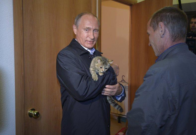 05_15_Putin_cat