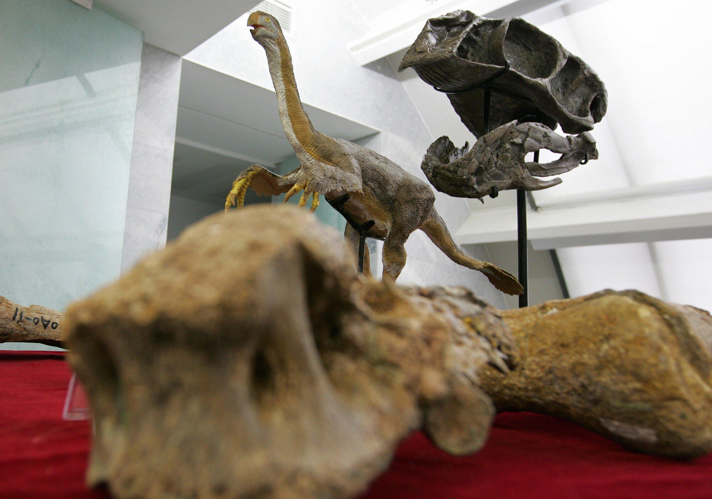 5_16_Gigantoraptor