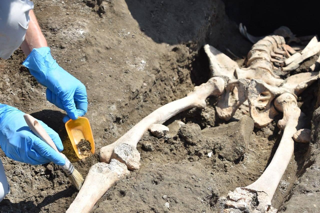 5_29_Pompeii skeleton_01