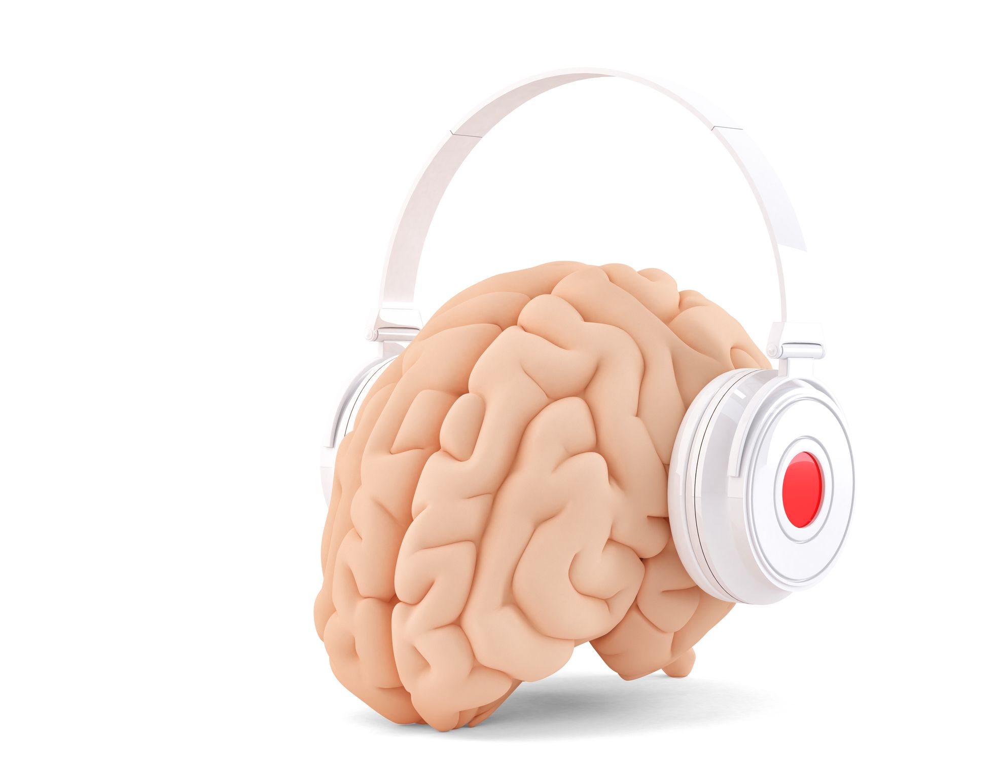 brain beats along with the heart u2014and scientists have