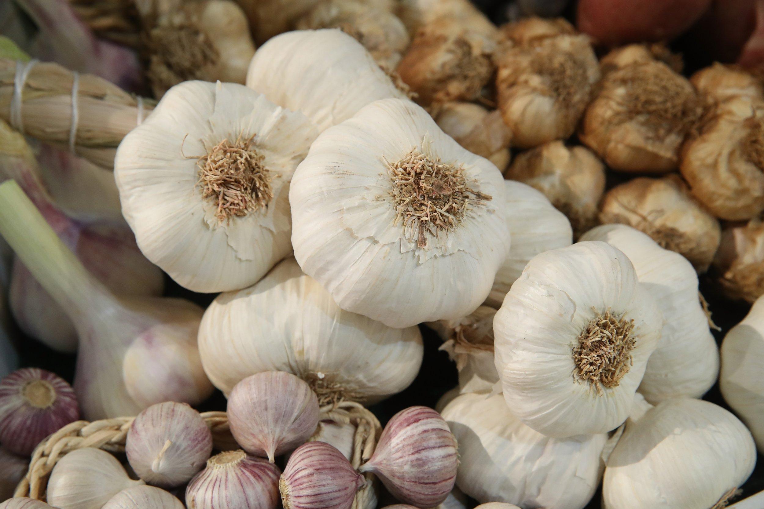 05_30_garlic