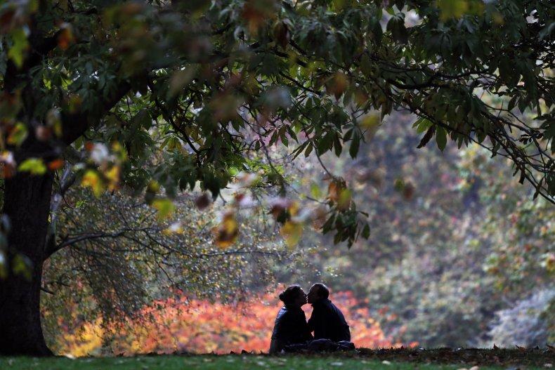 Couple beneath tree