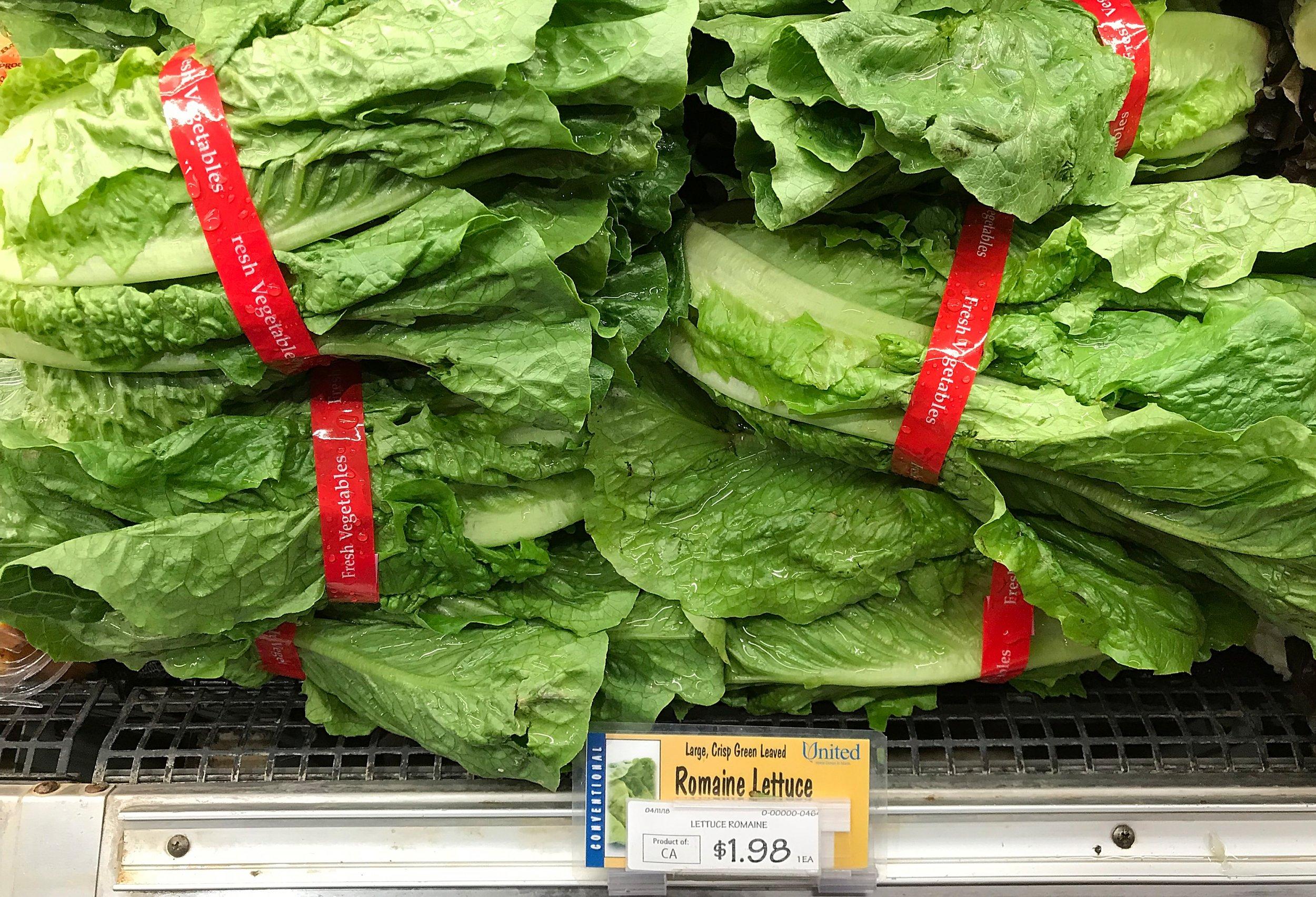 06_01_lettuce